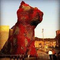 10/22/2011에 John C.님이 Puppy (Guggenheim)에서 찍은 사진