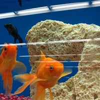 Photo taken at Petco by Eliza S. on 5/15/2012