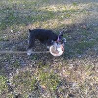 Photo taken at Rushton Park by Bradley B. on 1/3/2012