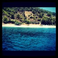 8/11/2012 tarihinde Gökçe B.ziyaretçi tarafından Mazı'de çekilen fotoğraf