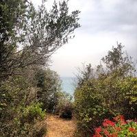 Photo taken at Punta Ala by Ilaria on 8/6/2012