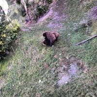 Das Foto wurde bei Bärenpark von Dan R. am 8/26/2012 aufgenommen