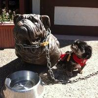 Photo taken at The Bulldog Cafe by Katrin on 8/30/2012