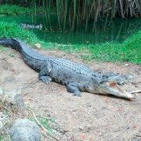 Photo taken at Crocodile Bank by Phanindra R. on 7/15/2012