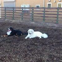 Photo taken at DOG PARK B-Wood by K I. on 12/17/2011