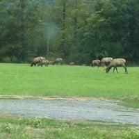 Photo taken at Elk Fields by Rick I. on 8/31/2011