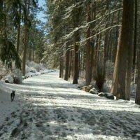 Photo taken at Manito Park by Michelle S. on 2/26/2012