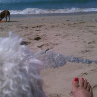 Photo taken at Huntington Dog Beach by Stefanie P. on 5/8/2012