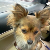 Photo taken at PetSmart by Keith D. on 6/23/2012