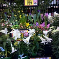 Photo taken at Harris Teeter by Autumn R. on 4/9/2012