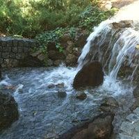8/26/2012 tarihinde Gözde G.ziyaretçi tarafından Botanik Parkı'de çekilen fotoğraf