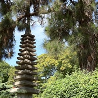 Photo taken at Jardín Japonés by SkipAroundTown on 12/22/2010