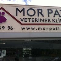 8/13/2011 tarihinde MarvinC C.ziyaretçi tarafından Mor Pati Veteriner Kliniği'de çekilen fotoğraf