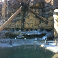 Photo taken at Akron Zoo by Shannon E. on 1/7/2012