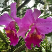 Photo taken at Orchid Farm by Thanapol T. on 4/17/2012