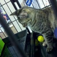 Photo taken at The Pet Corner by Robert K. on 1/20/2012