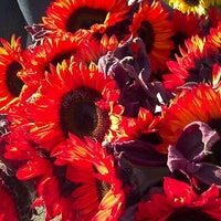 Photo taken at Stonestown Farmers Market by Joanne F. on 10/23/2011