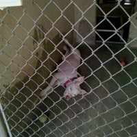 Photo taken at Town Lake Animal Shelter by Kate B. on 9/3/2011