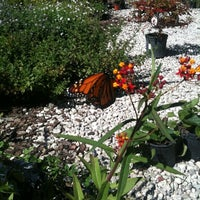 Beautiful ... Photo Taken At Garden Gate Nursery By Nahir R. On 10/2/2011 ...