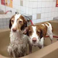 Photo taken at Pet Food Express by Chris on 9/8/2012