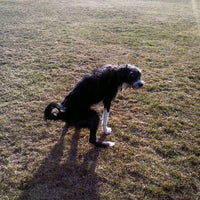 Photo taken at Hawthorn St Dog Park by Lindsay G. on 3/12/2012