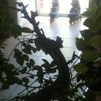 "Photo taken at Floraria""Gradinar"" by Juli on 8/22/2012"