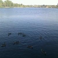 Photo taken at Мещерское озеро by Sergey P. on 8/2/2012
