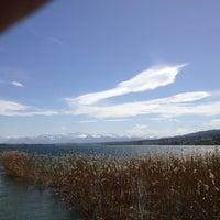 Photo taken at Naturschutzgebiet Unterer Greifensee by Markus T. on 4/28/2012