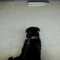 Photo taken at Kragness Animal Hospital by Jerret S. on 7/19/2012
