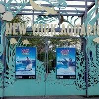Photo taken at New York Aquarium by John R. D. on 5/22/2012
