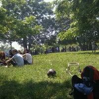 6/2/2012にDavide D.がParco Regionale dell'Appia Anticaで撮った写真