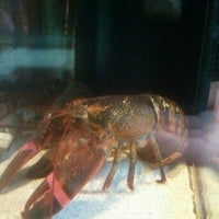 Photo taken at Red Lobster by Jada B. on 9/2/2012