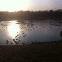 Photo taken at Smith Lake by Jim N. on 1/25/2012