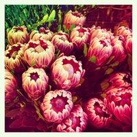 5/31/2012にCamila A.がPrahran Marketで撮った写真
