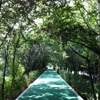 Photo taken at Yangjaechun Trails by Hyunjin K. on 9/13/2011