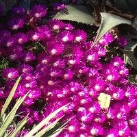 5/11/2012에 Daisy M.님이 Narrows Botanical Garden에서 찍은 사진