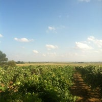Photo taken at Mackinaw Valley Vineyard by M.T. D. on 7/19/2012