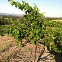 Photo taken at Bridlewood Estate Winery by Lena W. on 7/4/2011