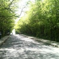Foto scattata a İTÜ Ağaçlı Yol da Sinan C. il 5/3/2012