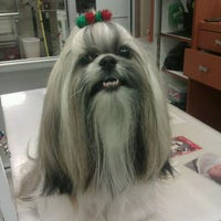 Photo taken at The Pet Station Salon And Boutique by Cassie H. on 1/7/2012