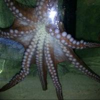 Photo taken at Akron Zoo by Joy W. on 7/29/2012