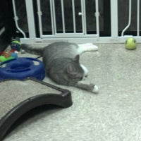 Photo taken at PetSmart by Sera W. on 2/4/2012