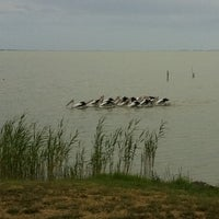Photo taken at Lake Albert Caravan Park by Jacqui G. on 2/20/2012