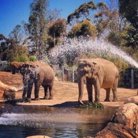 7/24/2012 tarihinde Lucas M.ziyaretçi tarafından Elephant Odyssey'de çekilen fotoğraf