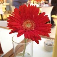 Foto tirada no(a) Casa & Gourmet Shopping por Renata P. em 5/15/2012