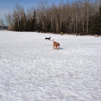 Photo taken at Thickwood Dog Park (Bark Park) by Shirley C. on 3/17/2012