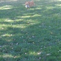 Photo taken at Elk Grove Off Leash Dog Park by Suzee ✂ Q. on 8/5/2012