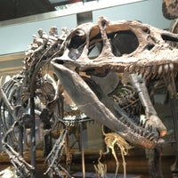 Foto tirada no(a) Natural History Museum of Los Angeles County por Andrew T. em 3/21/2012