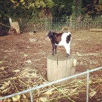 Photo taken at Fir Point Farms by Corinne E. on 10/23/2011