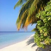 Photo taken at Vilamendhoo Island Resort & Spa by H B. on 2/16/2011
